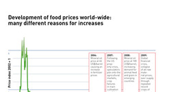 AEE_Development_of_food_prices_dec13_72dpi
